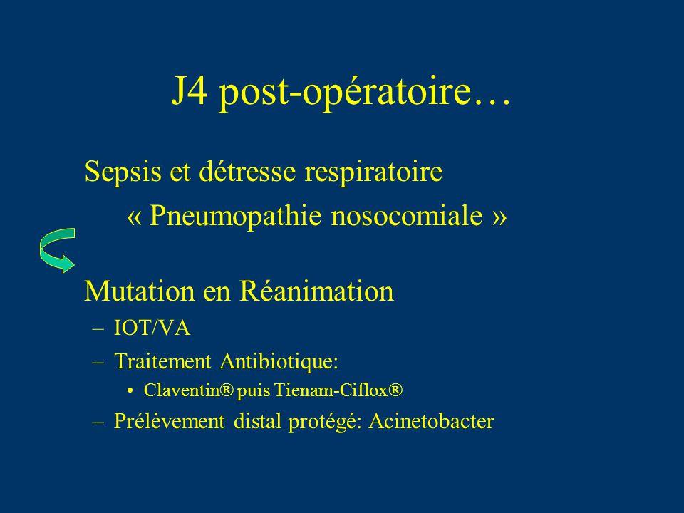 J4 post-opératoire… Sepsis et détresse respiratoire « Pneumopathie nosocomiale » Mutation en Réanimation –IOT/VA –Traitement Antibiotique: Claventin®