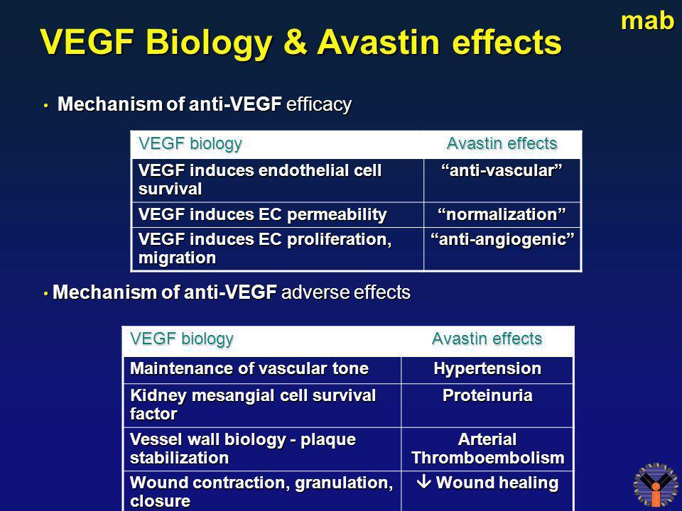 Mechanism of anti-VEGF efficacy Mechanism of anti-VEGF efficacy Mechanism of anti-VEGF adverse effects Mechanism of anti-VEGF adverse effects VEGF Bio