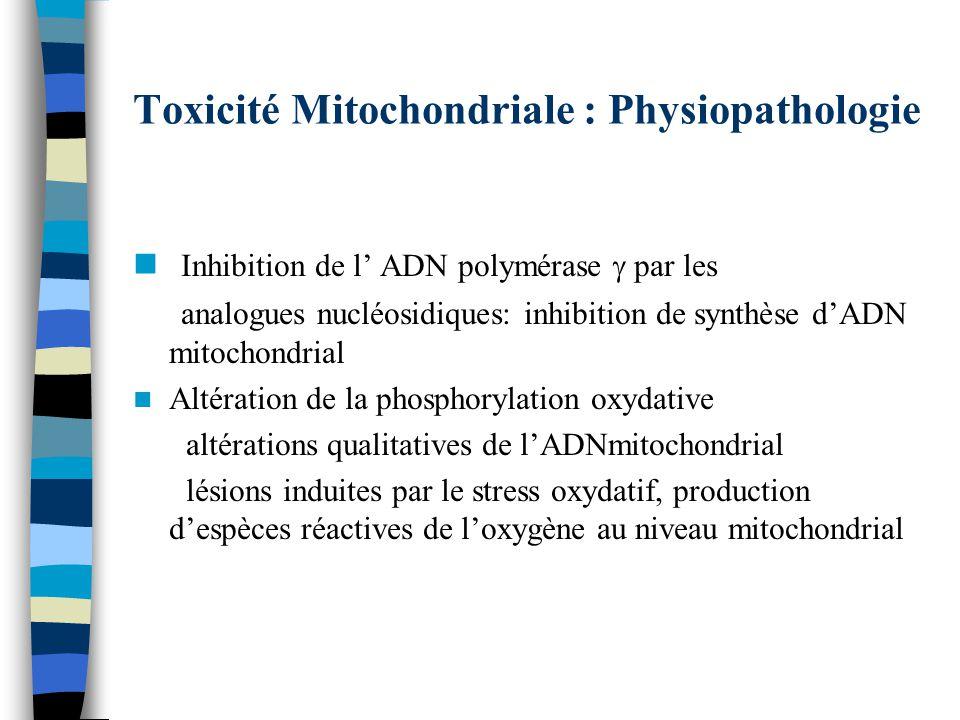 Toxicité Mitochondriale : Physiopathologie Inhibition de l ADN polymérase par les analogues nucléosidiques: inhibition de synthèse dADN mitochondrial Altération de la phosphorylation oxydative altérations qualitatives de lADNmitochondrial lésions induites par le stress oxydatif, production despèces réactives de loxygène au niveau mitochondrial