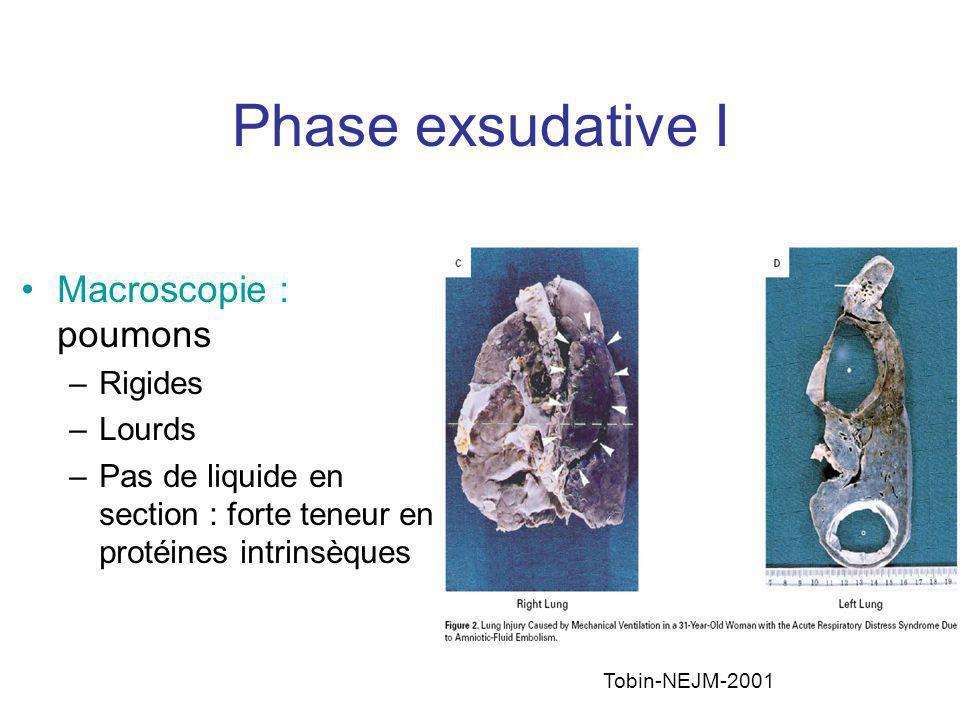Phase exsudative II Microscopie : –Dommages alvéolaires diffus –Dommages épithélial > endothélial –Congestion capillaire –Œdème alvéolaire et interstitiel –Hémorragie intra-alvéolaire et présence de PNN –Membranes hyalines : Fibrine, Ig et complément Ware, NEJM, 2000