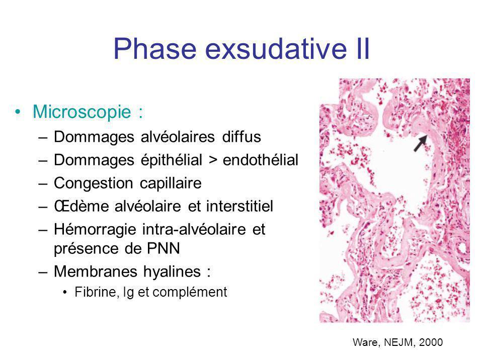 Œdème et hémorragique intra-alvéolaire Lumière alvéolaire Membranes hyalines