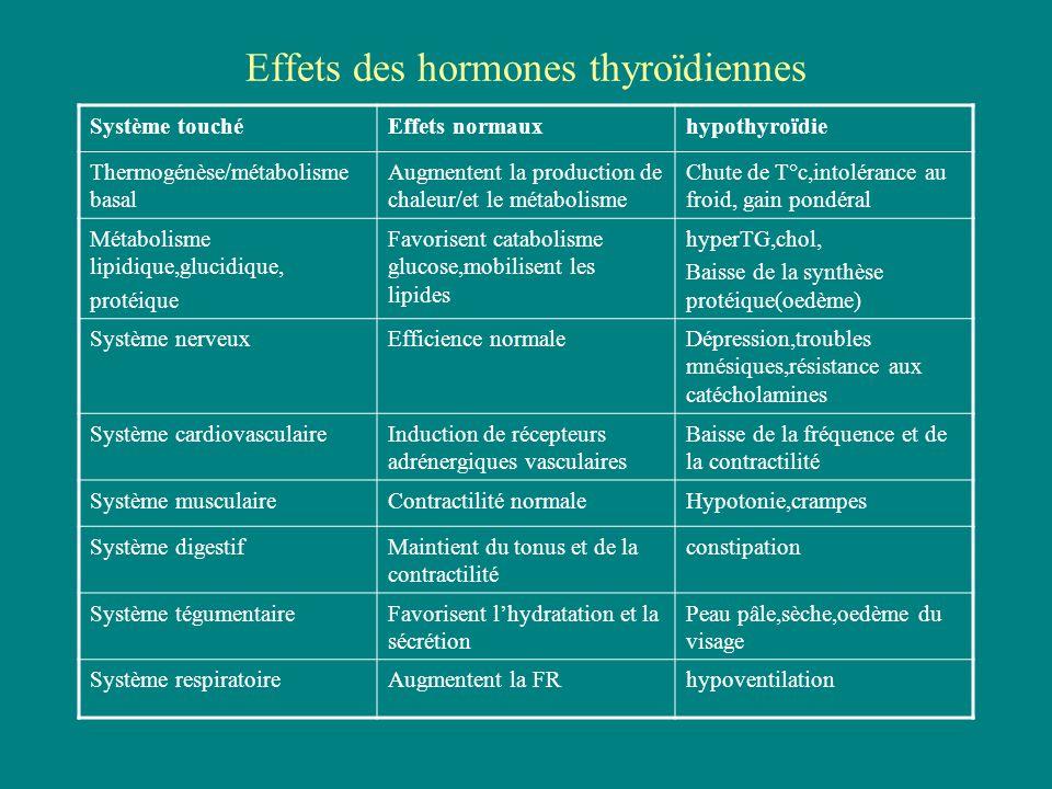 Effets des hormones thyroïdiennes Système touchéEffets normauxhypothyroïdie Thermogénèse/métabolisme basal Augmentent la production de chaleur/et le m