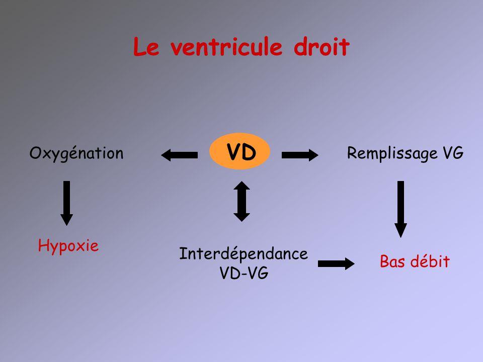 Le ventricule droit VD OxygénationRemplissage VG Hypoxie Bas débit Interdépendance VD-VG
