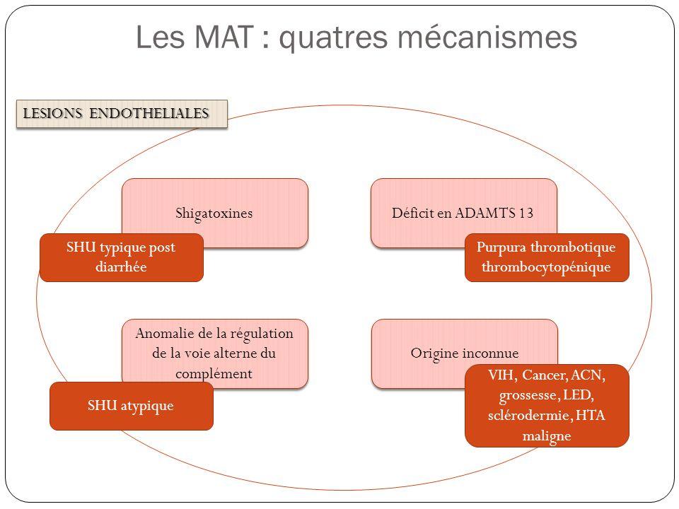 Les MAT : quatres mécanismes LESIONS ENDOTHELIALES Déficit en ADAMTS 13 Origine inconnue Anomalie de la régulation de la voie alterne du complément Sh