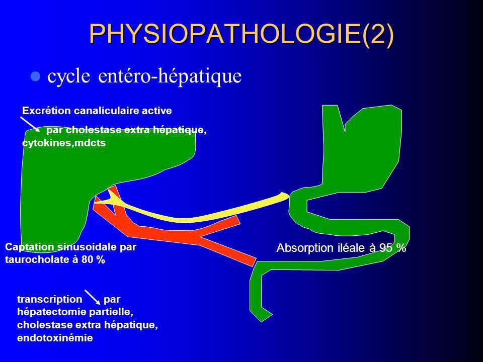 PHYSIOPATHOLOGIE(2) cycle entéro-hépatique Absorption iléale à 95 % Captation sinusoidale par taurocholate à 80 % transcription par hépatectomie parti