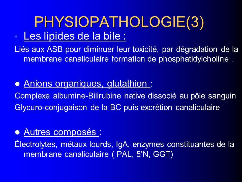 PHYSIOPATHOLOGIE(3) Les lipides de la bile : Liés aux ASB pour diminuer leur toxicité, par dégradation de la membrane canaliculaire formation de phosp