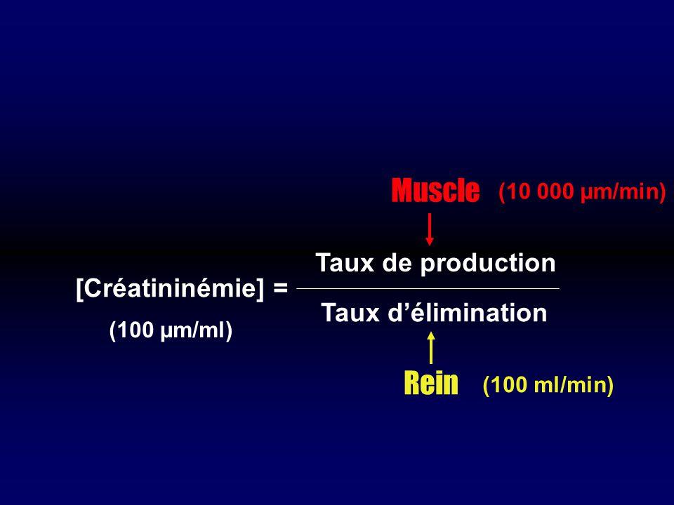[Créatininémie] = Taux de production Taux délimination Muscle Rein (10 000 µm/min) (100 ml/min) (100 µm/ml)