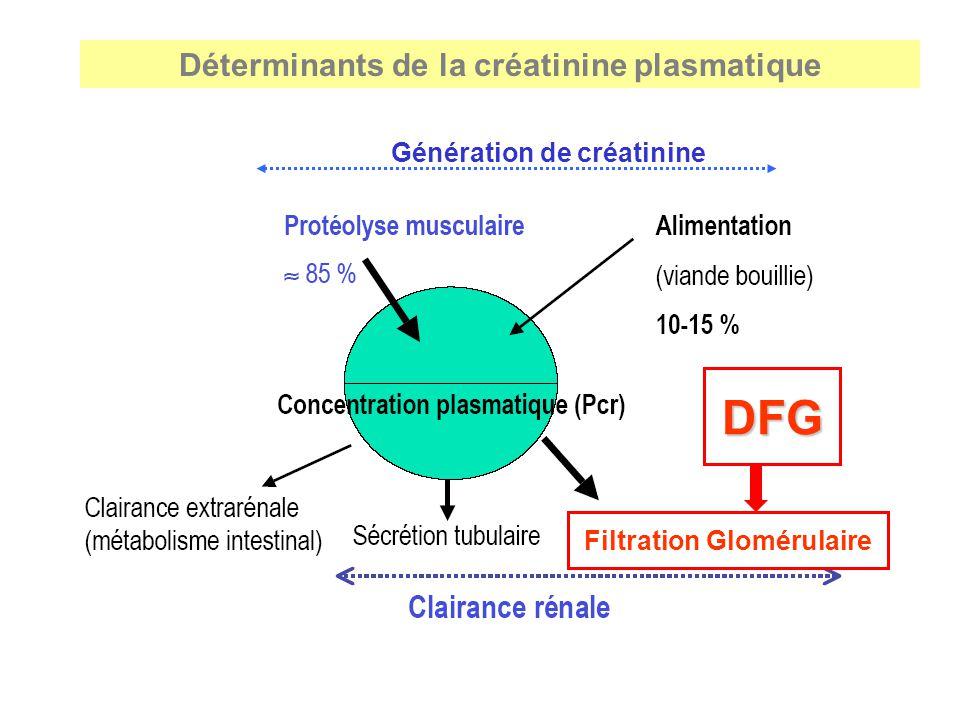 Déterminants de la créatinine plasmatique DFG Filtration Glomérulaire Génération de créatinine