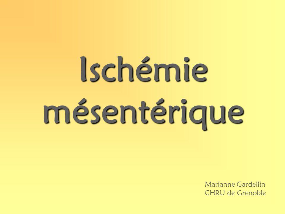 Ischémie mésentérique Marianne Gardellin CHRU de Grenoble