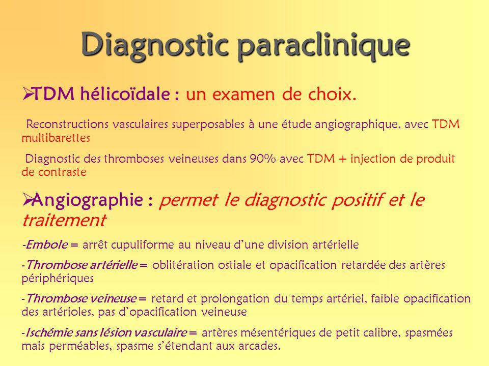 Diagnostic paraclinique TDM hélicoïdale : un examen de choix. Reconstructions vasculaires superposables à une étude angiographique, avec TDM multibare