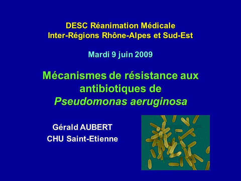 DESC Réanimation Médicale Inter-Régions Rhône-Alpes et Sud-Est Mardi 9 juin 2009 Mécanismes de résistance aux antibiotiques de Pseudomonas aeruginosa