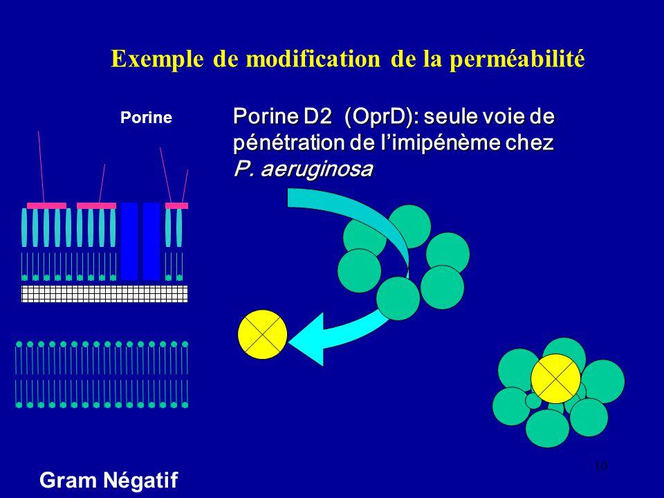 10 Exemple de modification de la perméabilité Porine D2 (OprD): seule voie de pénétration de limipénème chez P. aeruginosa
