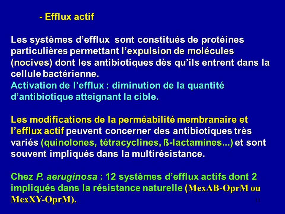 11 - Efflux actif Les systèmes defflux sont constitués de protéines particulières permettant lexpulsion de molécules (nocives) dont les antibiotiques