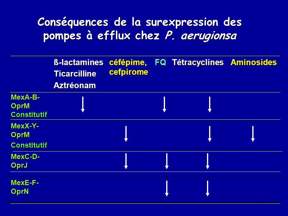 13 Conséquences de la surexpression des pompes à efflux chez P. aerugionsa ß-lactaminesTicarcillineAztréonam céfépime, cefpirome FQTétracyclinesAminos