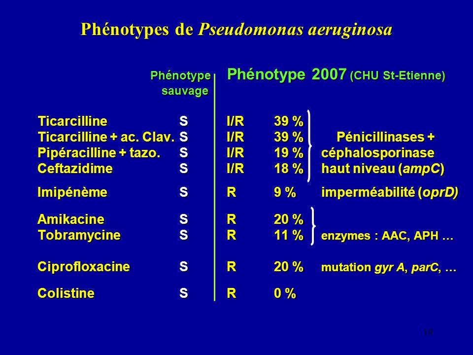 19 Phénotypes de Pseudomonas aeruginosa Phénotype Phénotype 2007 (CHU St-Etienne) Phénotype Phénotype 2007 (CHU St-Etienne) sauvage sauvage Ticarcilli