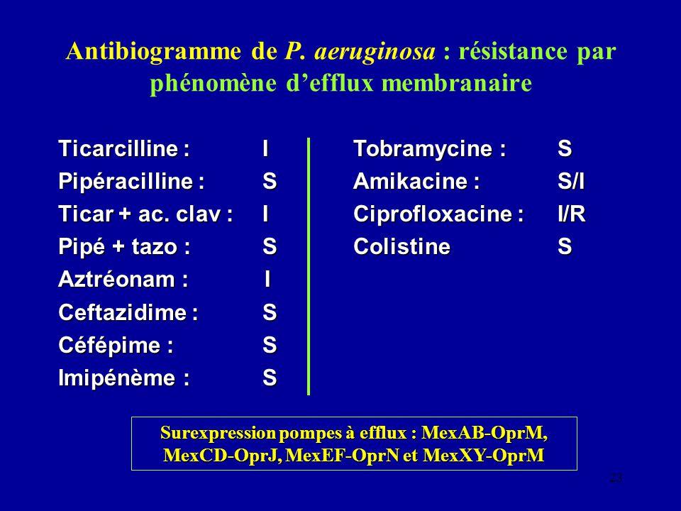 23 Antibiogramme de P. aeruginosa : résistance par phénomène defflux membranaire Ticarcilline :I Pipéracilline :S Ticar + ac. clav :I Pipé + tazo :S A