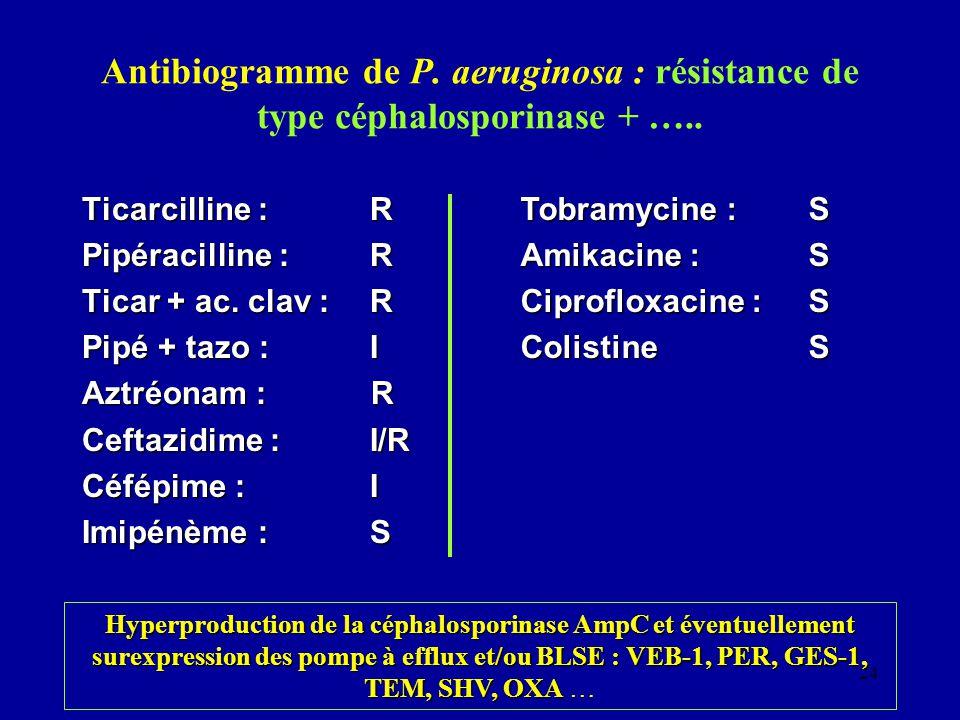 24 Antibiogramme de P. aeruginosa : résistance de type céphalosporinase + ….. Ticarcilline :R Pipéracilline :R Ticar + ac. clav :R Pipé + tazo :I Aztr