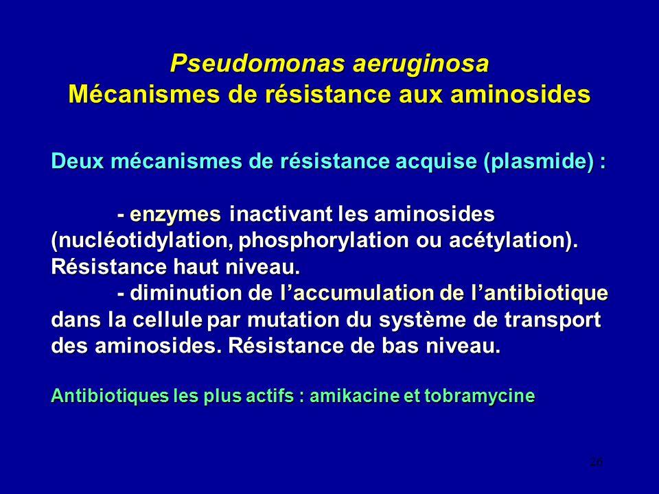 26 Pseudomonas aeruginosa Mécanismes de résistance aux aminosides Deux mécanismes de résistance acquise (plasmide) : - enzymes inactivant les aminosid