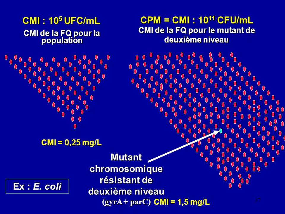 37 CMI : 10 5 UFC/mL CMI : 10 5 UFC/mL CMI de la FQ pour la population CPM = CMI : 10 11 CFU/mL CMI de la FQ pour le mutant de deuxième niveau Mutant