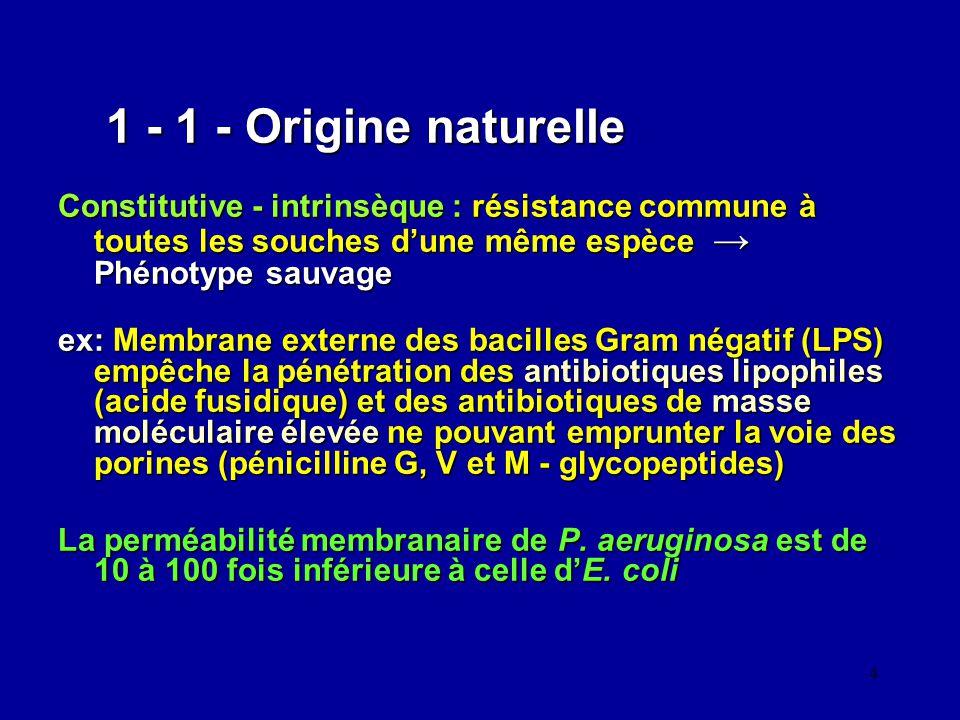 4 1 - 1 - Origine naturelle Constitutive - intrinsèque : résistance commune à toutes les souches dune même espèce Phénotype sauvage ex: Membrane exter