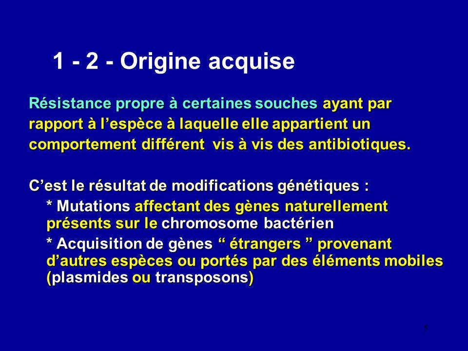 5 1 - 2 - Origine acquise Résistance propre à certaines souches ayant par rapport à lespèce à laquelle elle appartient un comportement différent vis à