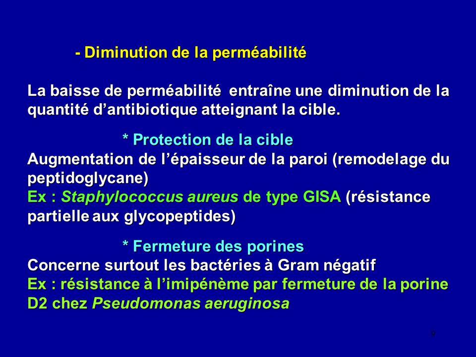 20 Pseudomonas aeruginosa Mécanismes de résistance aux ß-lactamines Résistance acquise : - enzymatique: - céphalosporinase hyperproduite (AmpC) - ß-lactamases à spectre étroit :pénicillinase (PSE/CARB, TEM-1 et TEM-2), oxacillinases ; - ß-lactamases à spectre étroit : pénicillinase (PSE/CARB, TEM-1 et TEM-2), oxacillinases ; - ß-lactamases à spectre étendu (BLSE) : - classe A : VEB-1, PER-1, GES-1, TEM-4 …, SHV-5 … - classe B : imipénémase * (metallo ß-lactamases) : IMP, VIM … * (metallo ß-lactamases) : IMP, VIM … * (sérine ß-lactamases) : KPC * (sérine ß-lactamases) : KPC - classe D : OXA