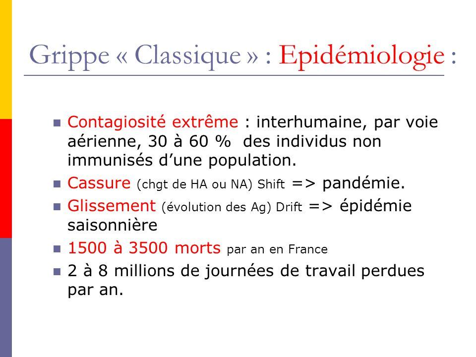 Vaccination Anti-Grippale :