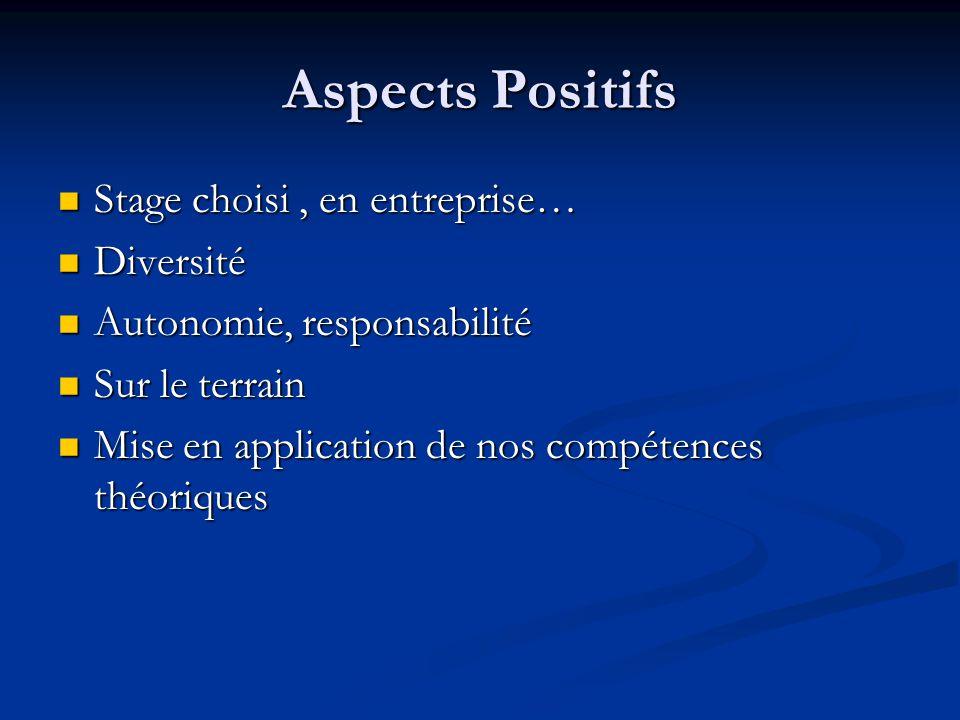 Aspects Positifs Stage choisi, en entreprise… Stage choisi, en entreprise… Diversité Diversité Autonomie, responsabilité Autonomie, responsabilité Sur