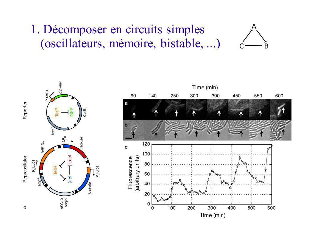1. Décomposer en circuits simples (oscillateurs, mémoire, bistable,...)