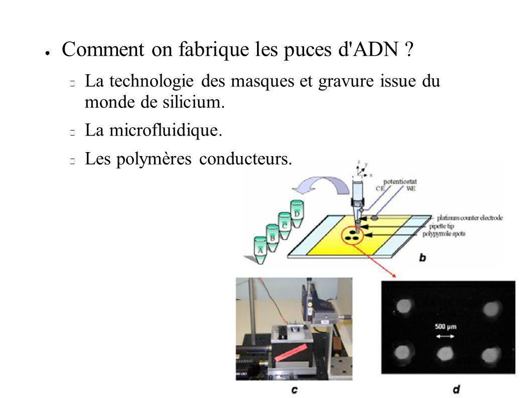 Comment on fabrique les puces d'ADN ? La technologie des masques et gravure issue du monde de silicium. La microfluidique. Les polymères conducteurs.