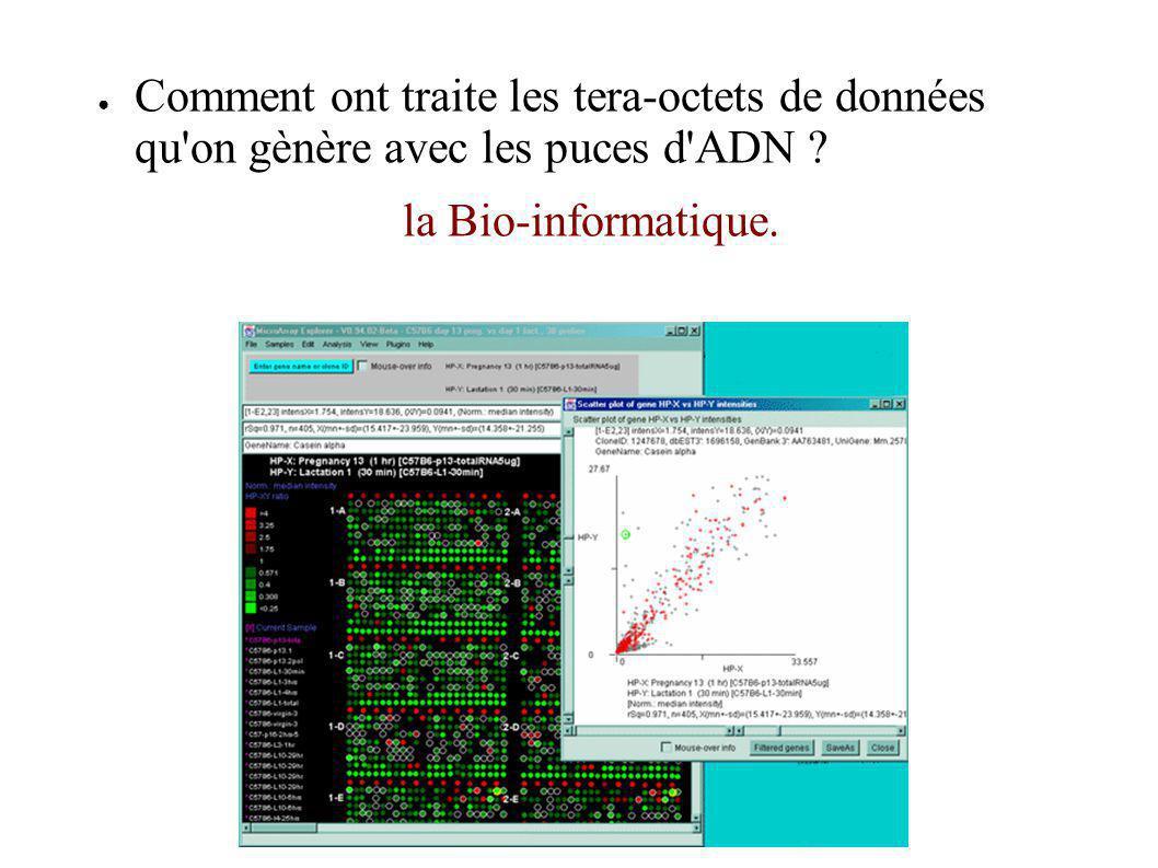 Comment ont traite les tera-octets de données qu'on gènère avec les puces d'ADN ? la Bio-informatique.