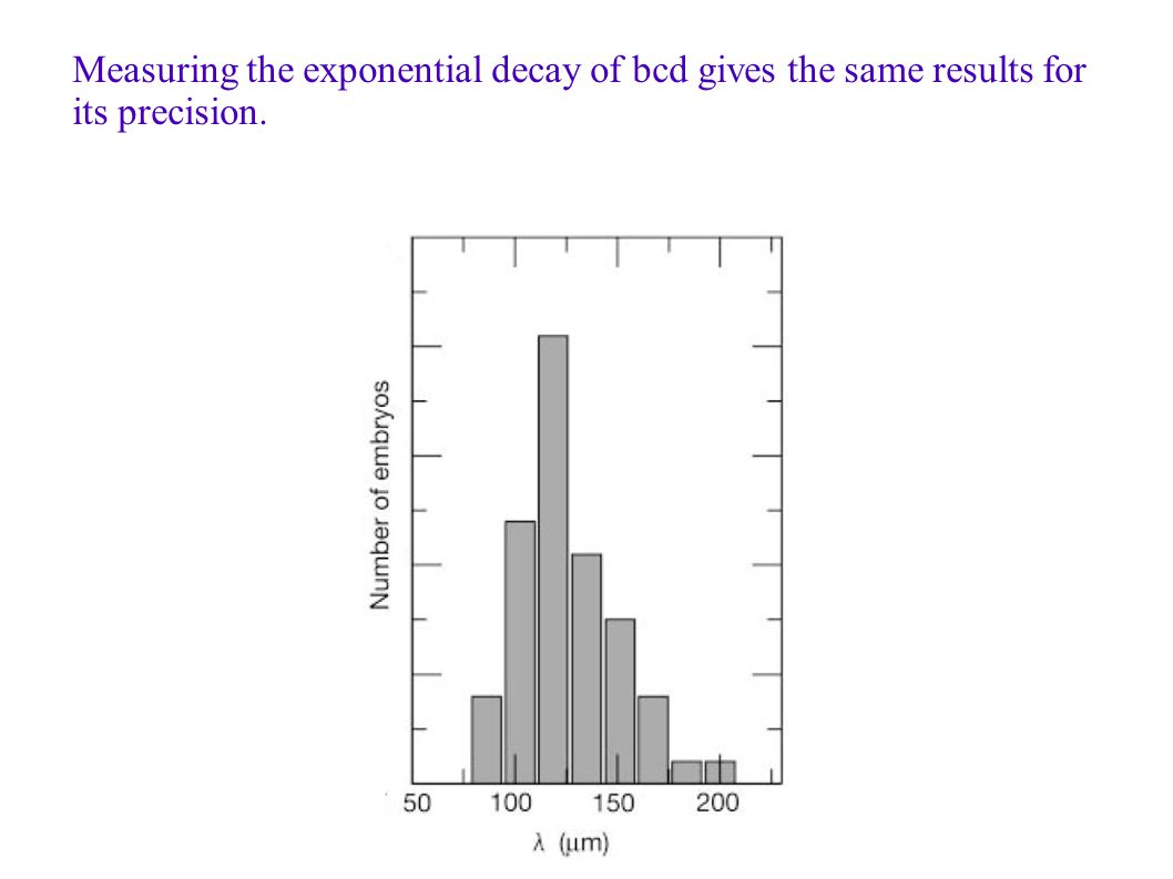 Measuring the exponential decay of bcd gives the same results for its precision.