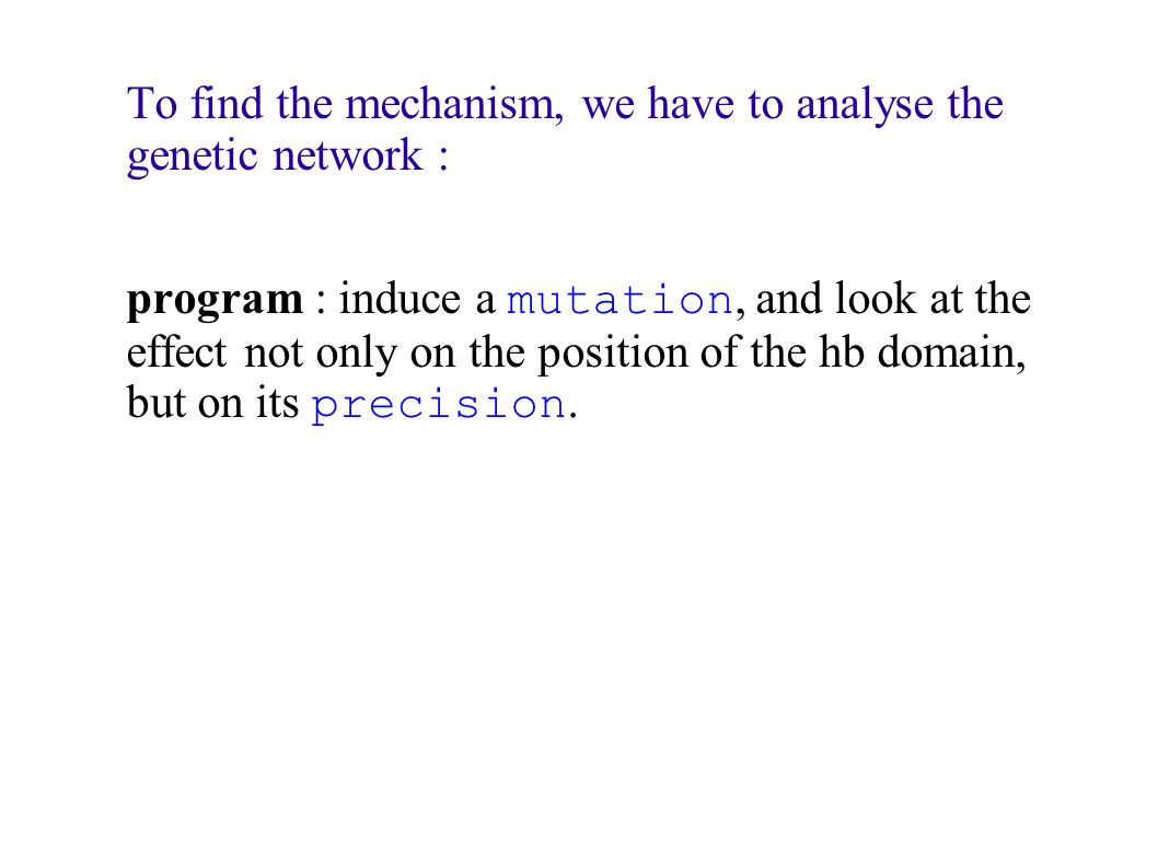 To find the mechanism, we have to analyse the genetic network : program : induce a mutation, and look at the effect not only on the position of the hb