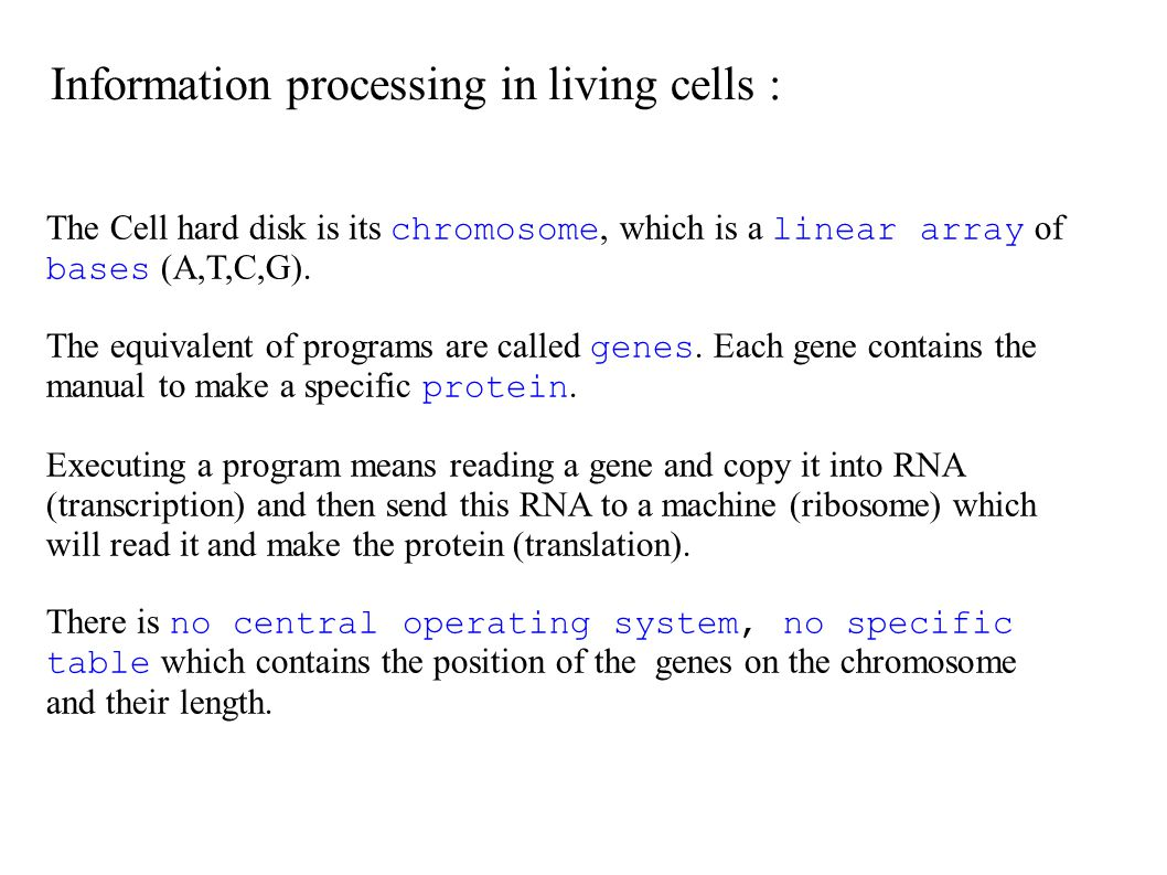 The Cell hard disk is its chromosome, which is a linear array of bases (A,T,C,G). The equivalent of programs are called genes. Each gene contains the