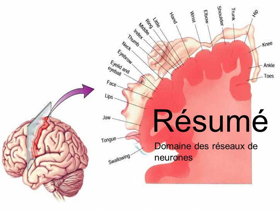 Résumé Domaine des réseaux de neurones