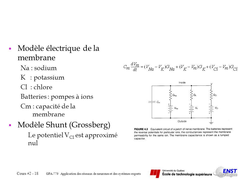 GPA-779 Application des réseaux de neurones et des systèmes experts Cours #2 - 18 Modèle électrique de la membrane Na : sodium K : potassium Cl : chlo