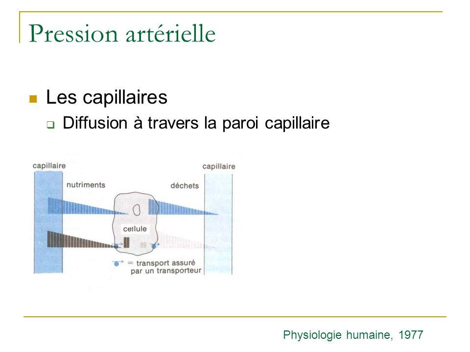 Pression artérielle Les capillaires Diffusion à travers la paroi capillaire Physiologie humaine, 1977