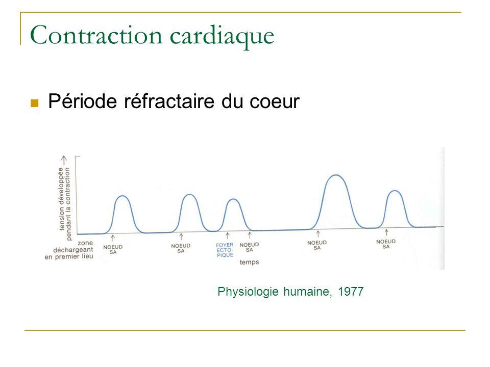 Contraction cardiaque Période réfractaire du coeur Physiologie humaine, 1977