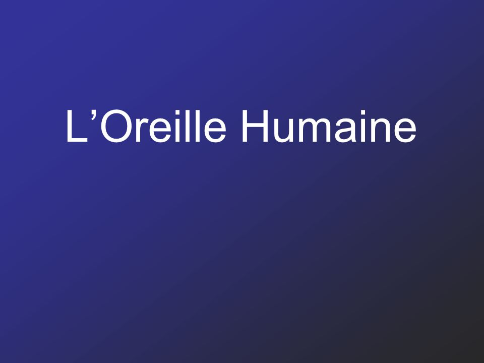 LOreille Humaine