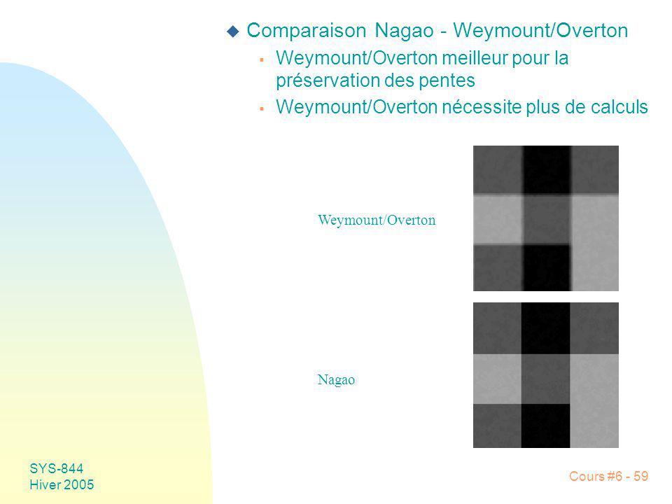 SYS-844 Hiver 2005 Cours #6 - 59 u Comparaison Nagao - Weymount/Overton Weymount/Overton meilleur pour la préservation des pentes Weymount/Overton néc