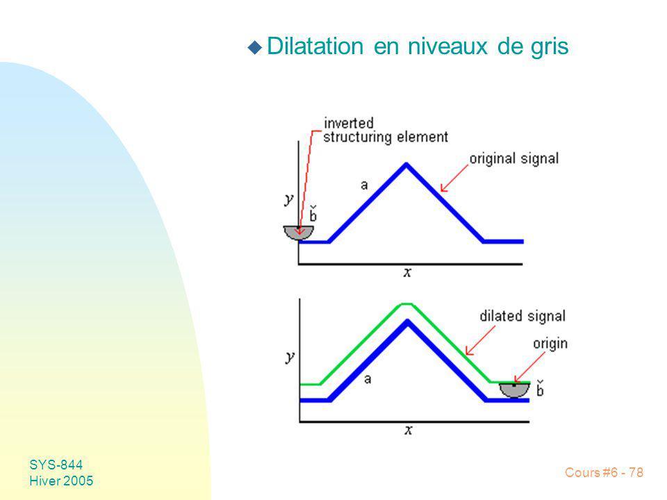 SYS-844 Hiver 2005 Cours #6 - 78 u Dilatation en niveaux de gris
