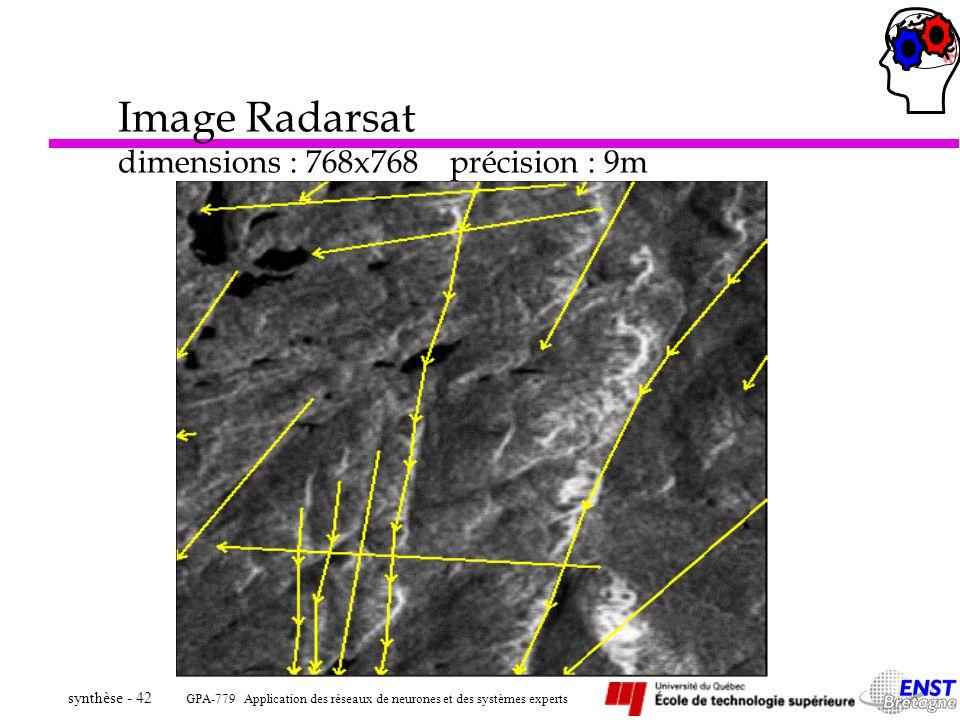 GPA-779 Application des réseaux de neurones et des systèmes experts synthèse - 42 Image Radarsat dimensions : 768x768 précision : 9m