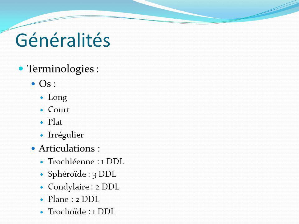 Généralités Terminologies : Os : Long Court Plat Irrégulier Articulations : Trochléenne : 1 DDL Sphéroïde : 3 DDL Condylaire : 2 DDL Plane : 2 DDL Trochoïde : 1 DDL