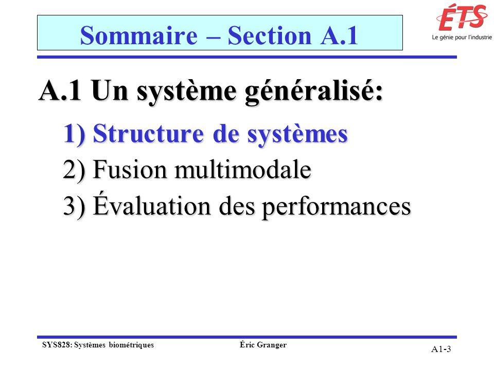 A1-3 Sommaire – Section A.1 A.1 Un système généralisé: 1) Structure de systèmes 2) Fusion multimodale 3) Évaluation des performances SYS828: Systèmes