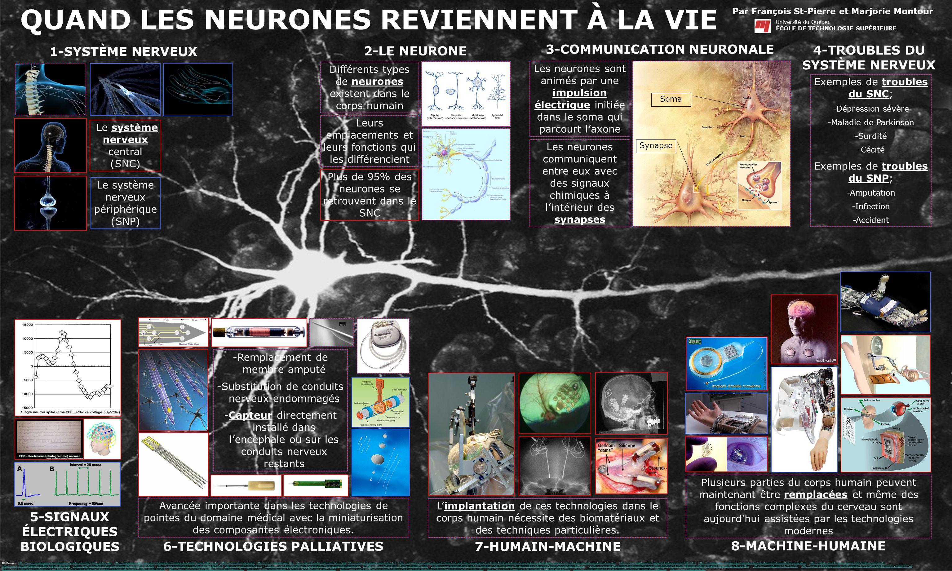 QUAND LES NEURONES REVIENNENT À LA VIE Références; http://www.georgiapainphysicians.com/l2_edu_pharma_mod1_slides.htm, http://msjensen.cehd.umn.edu/We