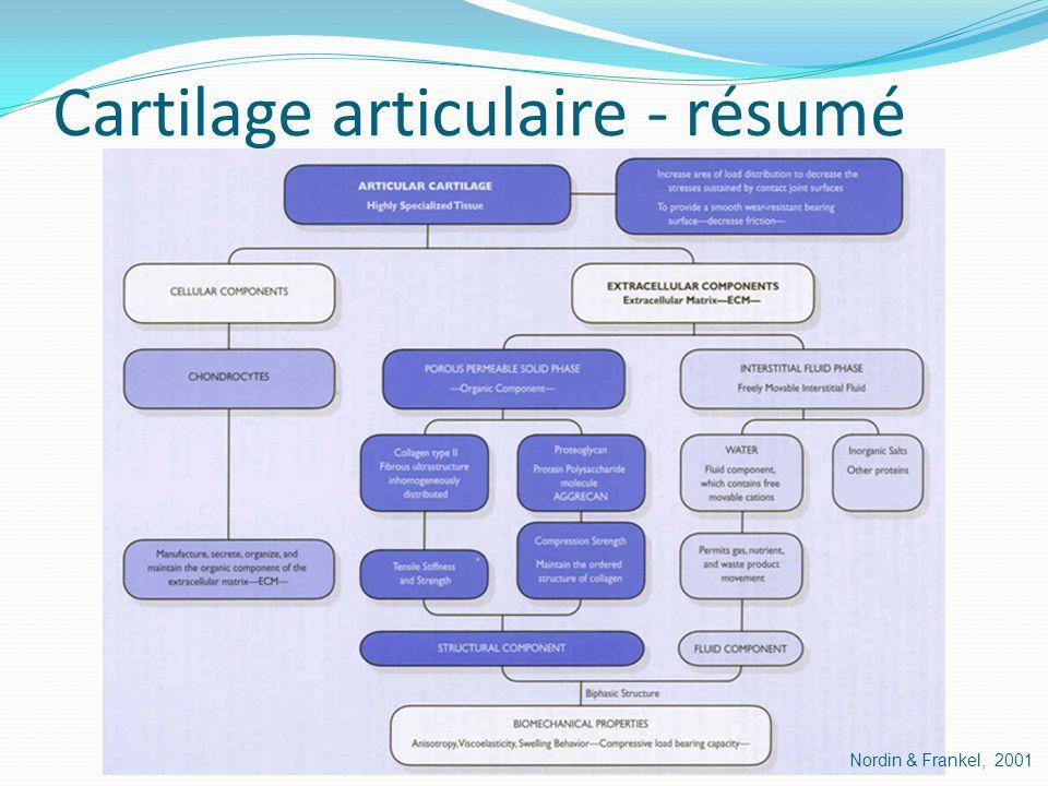 Cartilage articulaire - résumé Nordin & Frankel, 2001