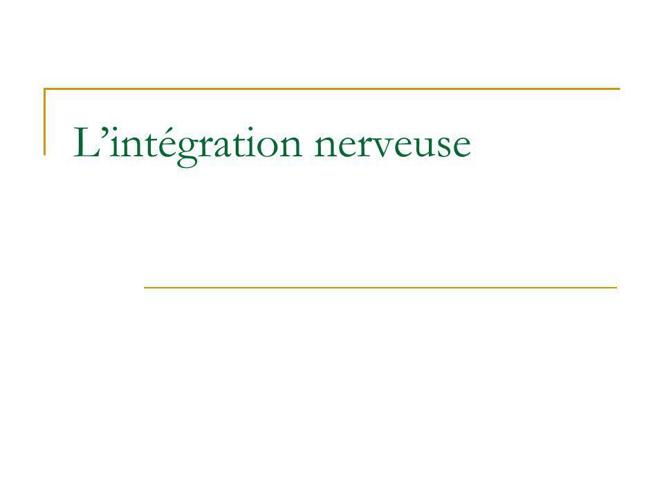 Lintégration nerveuse