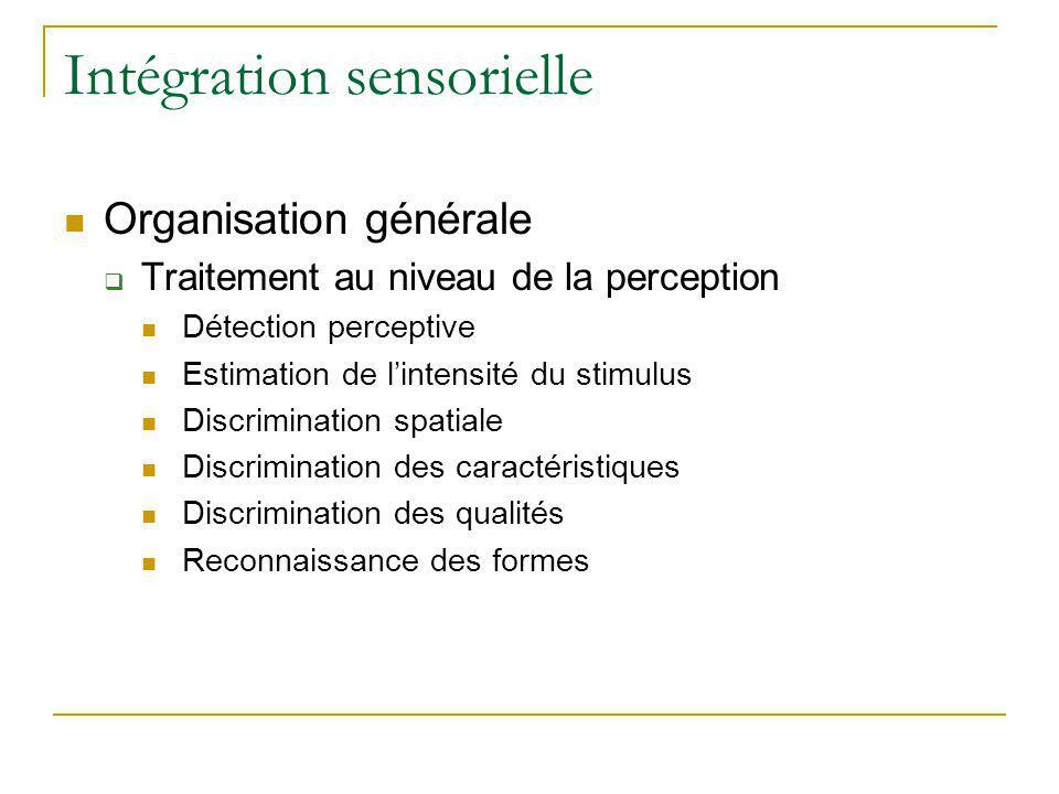 Intégration sensorielle Organisation générale Traitement au niveau de la perception Détection perceptive Estimation de lintensité du stimulus Discrimi