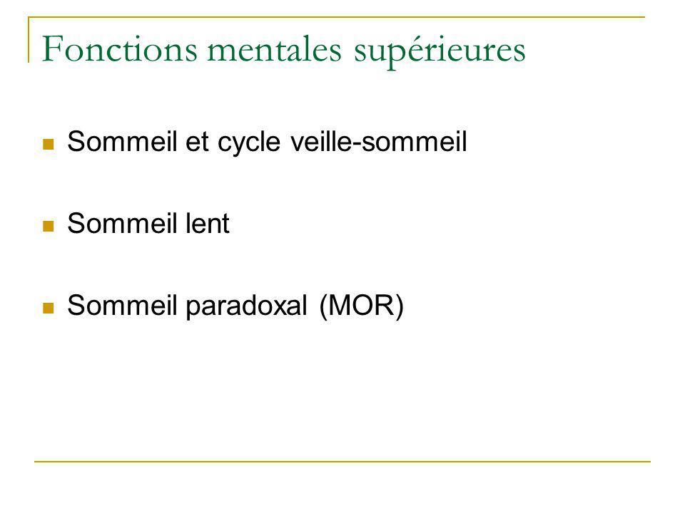 Fonctions mentales supérieures Sommeil et cycle veille-sommeil Sommeil lent Sommeil paradoxal (MOR)
