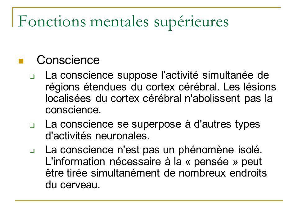 Fonctions mentales supérieures Conscience La conscience suppose lactivité simultanée de régions étendues du cortex cérébral. Les lésions localisées du